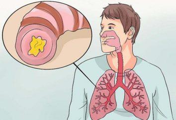 bronchite purulente: une description, causes possibles, types et évaluations
