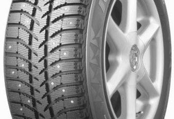 Opony Bridgestone Ice Cruiser 5000 opinii z właścicieli, zdjęcia i specyfikacje