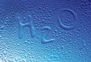 formación de hipótesis de la hidrosfera. ¿Cómo el agua en la Tierra?