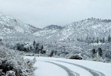 """Rym słowo """"śnieg"""", a przykłady jego zastosowania"""