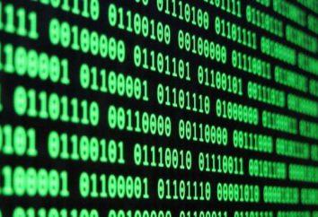 Die Darstellung von Informationen in einem Computer: Verwenden Sie die Beispiele