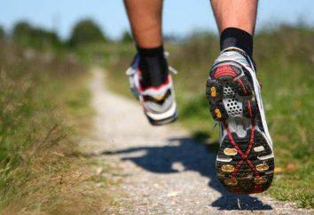 So wählen Sie Laufschuhe: Typen, Hersteller und Feedback. Wie Sie den richtigen Laufschuhe wählen. Technologie Laufschuhe