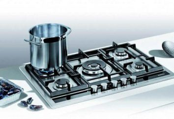Dlaczego potrzeba płyta gazowa kontroli?
