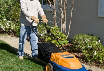 batterie de tondeuses à gazon – un équipement de jardin moderne