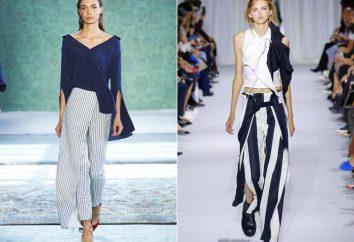 Tipos e estilos de calças das mulheres. Visão geral, apresenta uma combinação de profissionais e recomendações