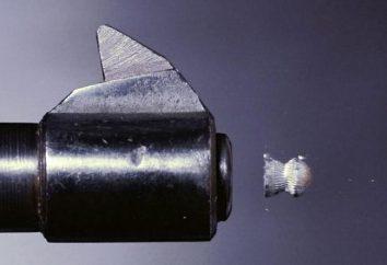 Bullet for pneumatica 4.5 per la caccia: una revisione del diritto di scegliere e recensioni