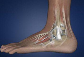 Kostka artrodezy: chirurgia, konsekwencje, rehabilitacji, pacjent opinii