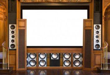 sistemas de audio para el hogar: características, selección, instalación, revisión