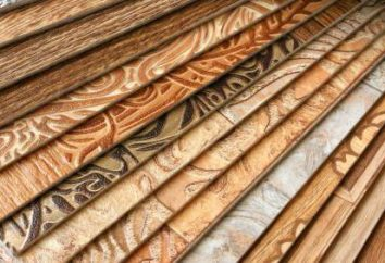 Linoléum Taille: largeur, épaisseur. Comment choisir le linoléum?