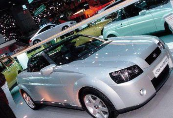 """""""Lada Roadster"""": Cechy i opinie"""