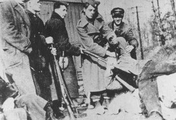 Petar Brzica et le génocide du peuple serbe