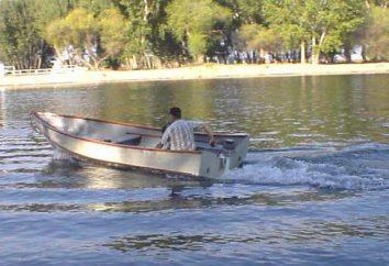 Gdzie lepiej wykorzystywać silniki elektryczne do pontonów?