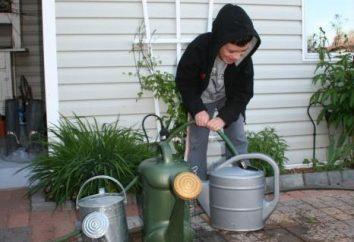 Die Pumpen für die Trommeln: für die Bewässerung, Düngung und Bewässerung