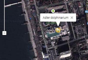 Sochi, Adler – Dolphinarium
