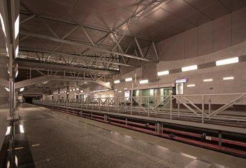 La station de métro « Parnassus » – un endroit qui ne peut manquer de visiter à Saint-Pétersbourg