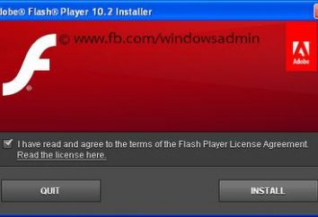 """Cómo actualizar """"adob Flash Player"""" en el sistema?"""