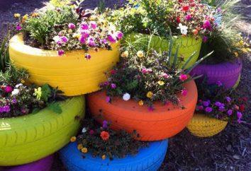 macizos de flores con sus manos: Hay un hermoso uso de cosas innecesarias