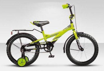 Kinderfahrräder Stels: Übersicht, Modelle, Funktionen und Bewertungen
