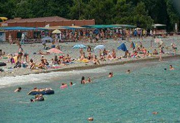 """Aquapark (Kabardinka) """"Hellas"""" i inne instytucje. Charakterystyka porównawcza i opinie"""