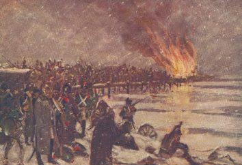 A Guerra Patriótica de 1812. Brevemente sobre as causas, o progresso e as consequências