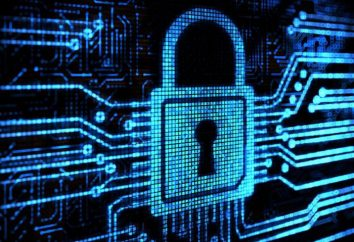 A ONU diz que as restrições à Internet violam os direitos humanos