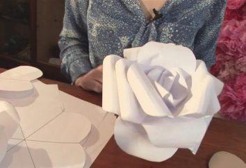 flores grandes de papel com suas próprias mãos