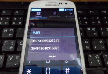 Przywracanie IMEI. Jak przywrócić IMEI na Androida po migać?