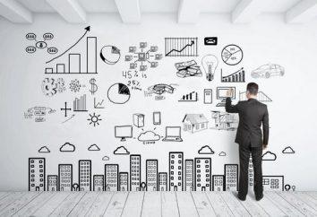 plan de un plan de negocios (ejemplo)
