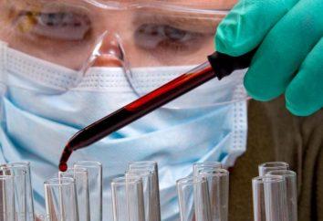 Serologische Blutuntersuchungen bei der Diagnose von Krankheiten