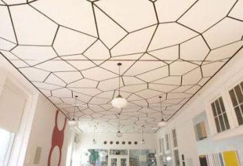 plafond Belle – un élément important de l'espace de conception