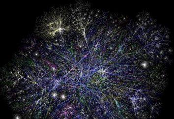 Configurazione QoS e caratteristiche di tecnologia