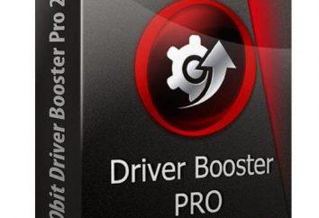 Booster kierowcy Program: opinie specjalistów
