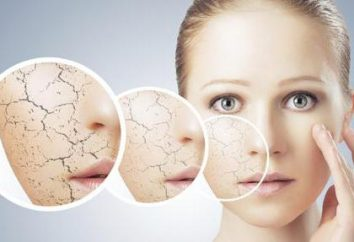 Quali sono tonici per il viso: la nomina, funzionalità dell'applicazione