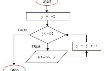 Podstawowe typy i przykłady algorytmów cyklicznych
