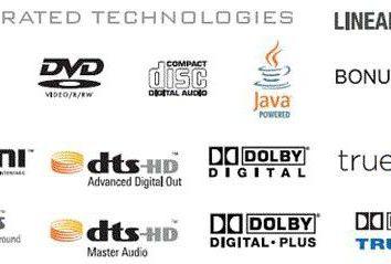 AVCHD – o tipo de formato? Advanced Video Codec High Definition – Advanced Video Codec High Definition