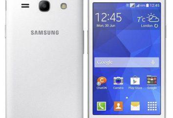"""""""Samsung G350E"""": Eigenschaften. Display, Betriebssystemfunktionen. Samsung Galaxy G350E Stern Voraus"""