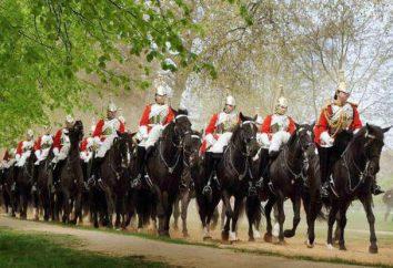Che cosa è un reggimento di cavalleria? La storia della cavalleria russa