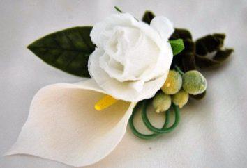 Bräutigam ansteckblume – ein Symbol der Feier!