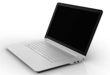 O programa é para melhorar o som em um laptop. Como funciona e desvantagens