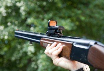 Pistolety w pudełku Izhevsk. Izhevsk karabiny gładkie