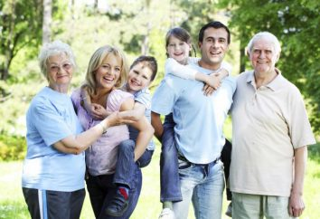 Família. Definição da família. Grande família – Definição