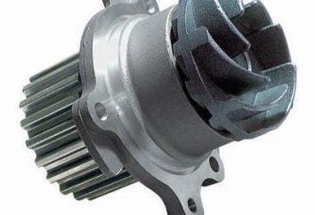 Pompe VAZ-2110: le dispositif et le remplacement