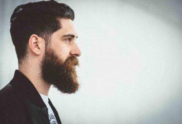 Pourquoi rêver d'une barbe sur le visage de la jeune fille? Pourquoi rêver d'un homme avec une barbe grise?