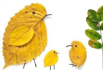 Automne artisanat à partir des feuilles (sèches) pour les enfants
