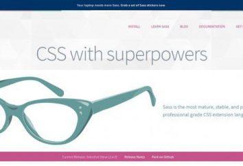 Preprocesor CSS: przegląd, selekcja, aplikacja