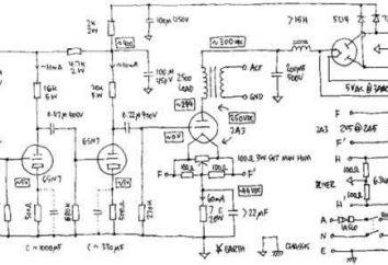 Cómo leer los diagramas de cableado, o Anatomía de símbolos y caracteres especiales