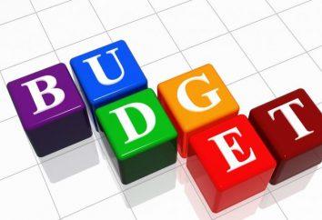 Budżet – to … Przygotowanie i zatwierdzenie budżetu