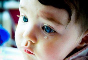 Descubra as principais razões por que os bebês choram