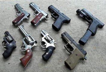 Les meilleurs fusils américains: spécifications et photos