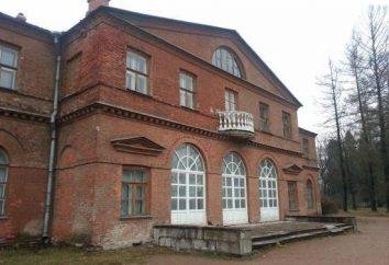 Vsevolozhsk, zabytki: lista, opis, historia, ciekawe fakty i opinie